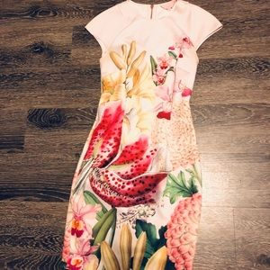 Ted Baker illu Midi dress